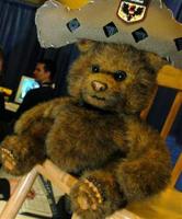 MS Bear